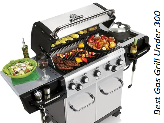 TESTIMONIALS OF BEST GAS GRILL UNDER 300 DOLLARS.