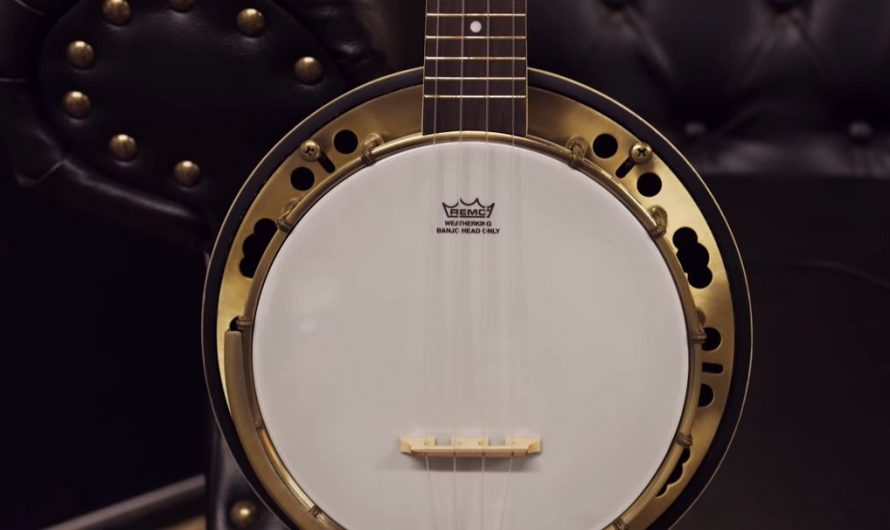 7 Best Banjoleles in 2020– The Perfect Crossbreed